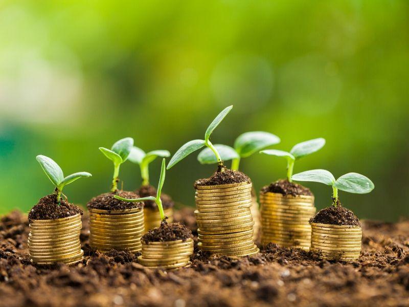 Incentivi fiscali con gli Ecobonus: efficienza energetica per risparmiare fino al 50%