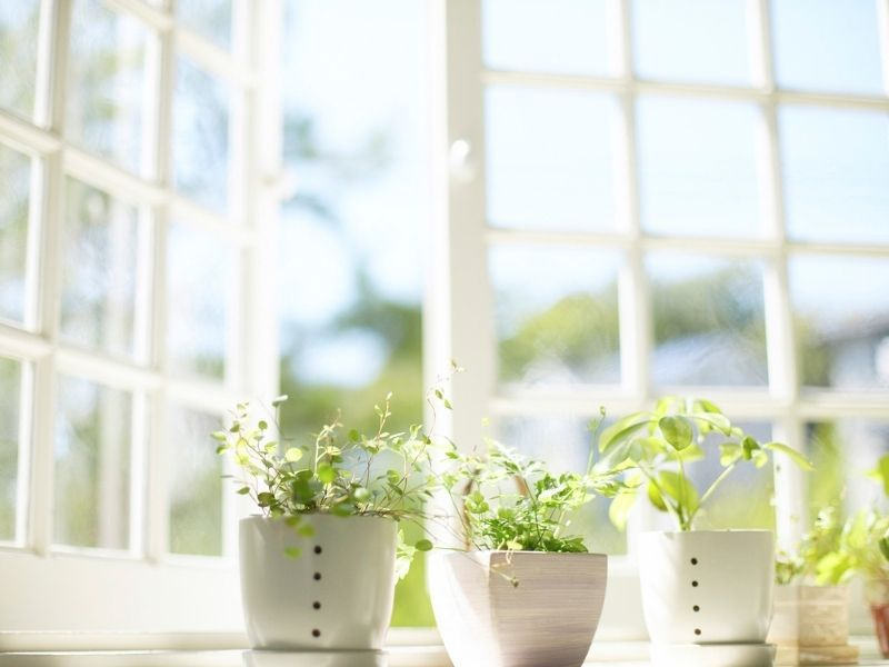 Le finestre e la qualità dell'aria: come sceglierle per prevenire allergie, asma e muffe